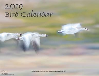 calendar-2019-cover
